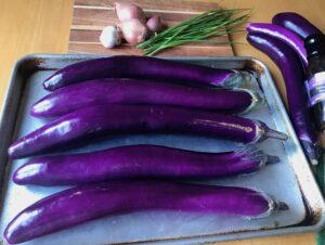 Long Asian Eggplant